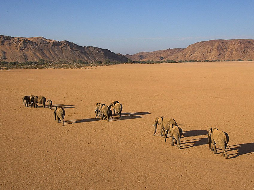 Viaggi in Namibia - Damaraland - www.viagea.it