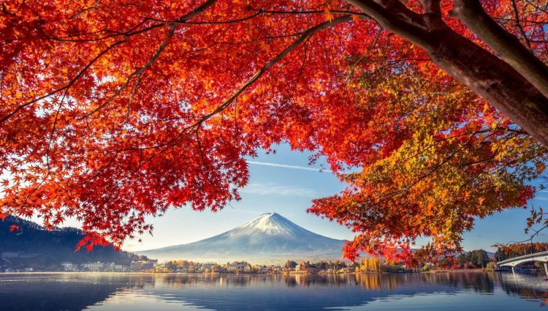 autunno in giappone_01